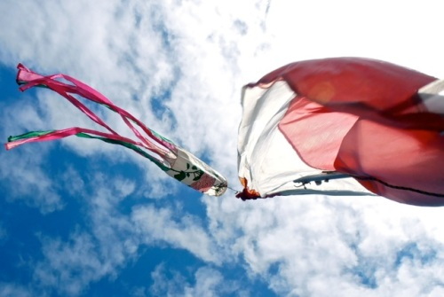 rose wind sock that flies from the boat