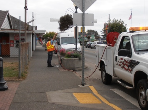 Allan's photo: city crew member watering a hanging basket