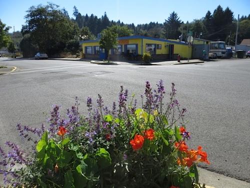 same planter, backdrop of Don's Portside Café