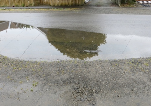 It had rained considerably overnight, as this puddle in front of our house showed.