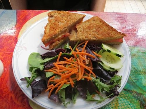 Carol had a grilled cheese sandwich.
