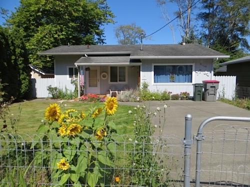 sunflowers on a fence like my grandma's back alley fence