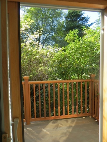 woodsy view from back deck