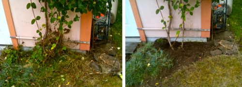 one of the areas Allan tackled, before and after