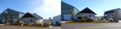 Before and After, Allan's photo; we left a couple of the still-blooming lavenders for now