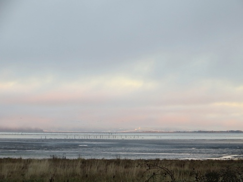 The Astoria Megler Bridge was unusually visible from our debris dumping spot.