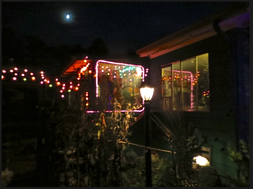 and our own lights with some spooky plants
