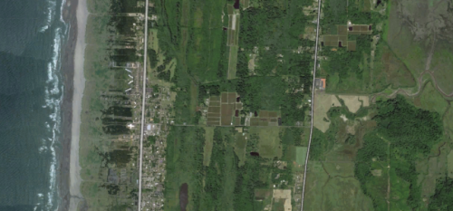 Halfway between ocean and Willapa Bay on Pioneer Road are the geometrical shapes of the cranberry station bogs.