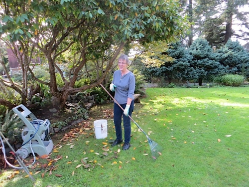 Mary was raking leaves.