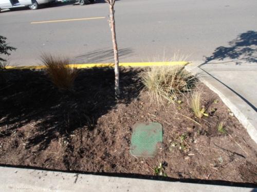 same corner as above (Allan's photo)