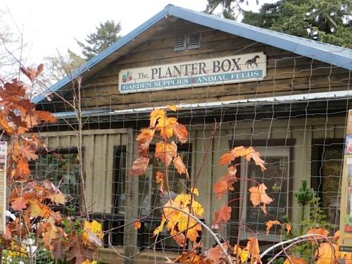 The Planter Box