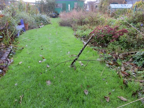 The way the branches spear several inches into the ground is why I don't go into the back garden in a wind storm.