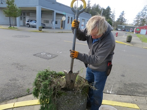 Allan used this neat little shovel, recommended to us by Pam Fleming, the gardener for Seaside, Oregon.