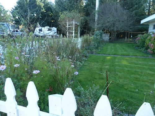 picket fence garden, before, looking north from the office door area