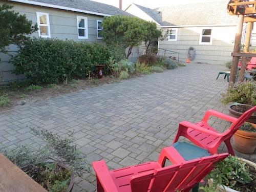 Goodbye to the courtyard garden till 2015!!!