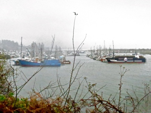 looking east over the harbour