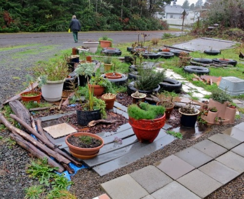 Allan's photo: a garden in the making