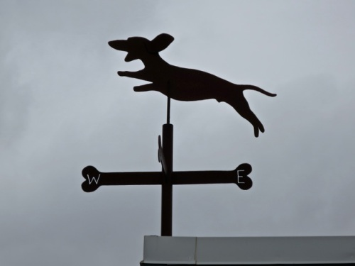 Allan noticed the weathervane atop the café!