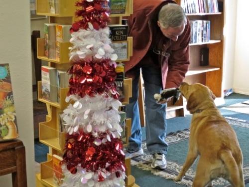 Allan's photo; shop dog Scout
