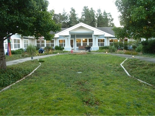 looking north:  I'm happy with how the center lawn is turning to moss spangled with a few plants.