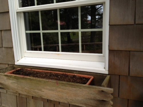 One of two A Frame windowbox liners planted with bulbs and back in place.