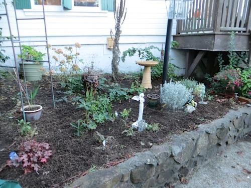 the back porch garden
