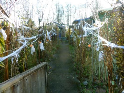 The Corridor of Spooky Plants would prove to be so daunting that some littlies were afraid to walk up to our porch.