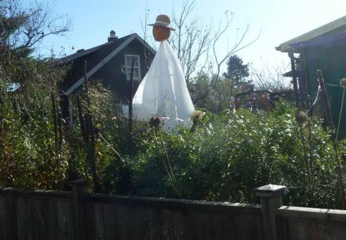 an effective garden ghost