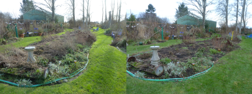 before and after in the back garden