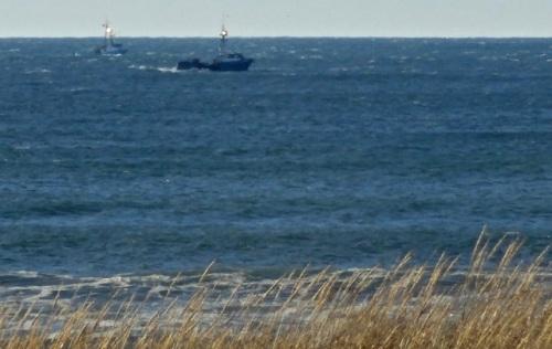 crabbing boats, Allan's photo