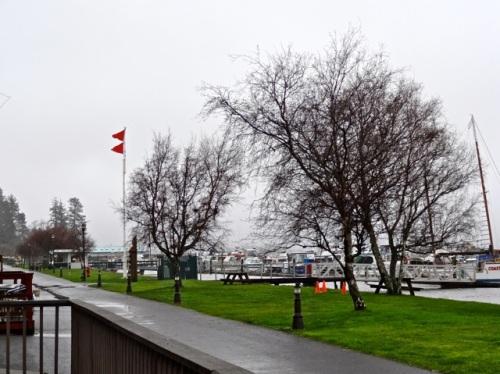 double storm flag (Allan's photo)
