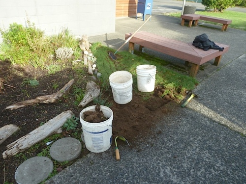 buckets, hand tools, half moon edger