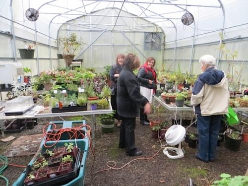 a mingling of gardeners