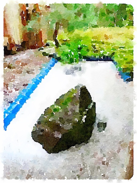 a waterlogue of the sand garden from a gardening day of the past