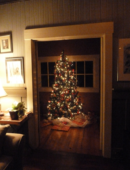 flashback to Patti's Christmas tree when she'd had us over for dinner on December 5th.