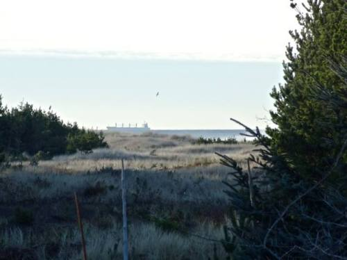 Allan's telephoto of a cargo ship passing by