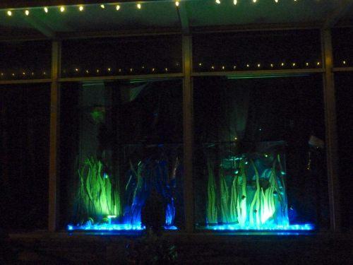 Queen La De Da's underwater window, Spruce Street