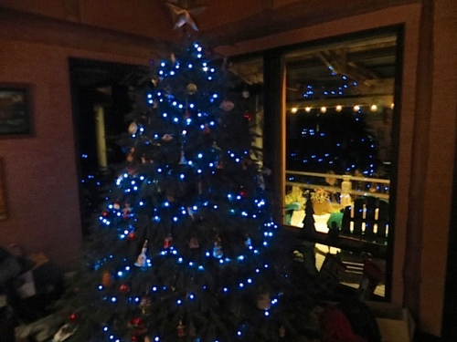 the tree, which was purchased from the Ilwaco High School Music Boosters annual Christmas tree sale