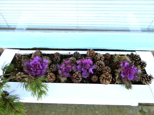 beautiful job on the windowbox, Susie!