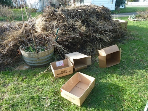 Allan gave me some boxes from his shed.