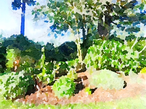 I simply had to Waterlogue it.