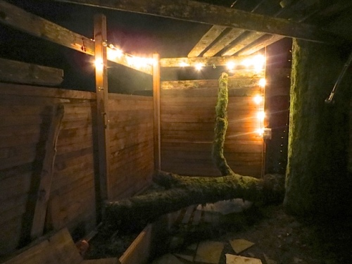 in the enclosed sauna room courtyard