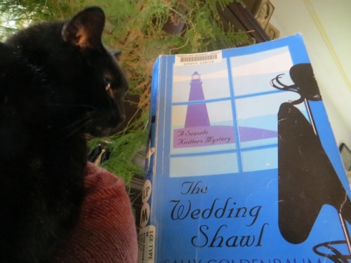 On December 2, I read The Wedding Shawl.