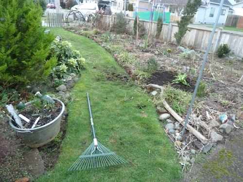 end of day; Allan had kindly dug out some running clumps of the carex (also saved for Debbie).