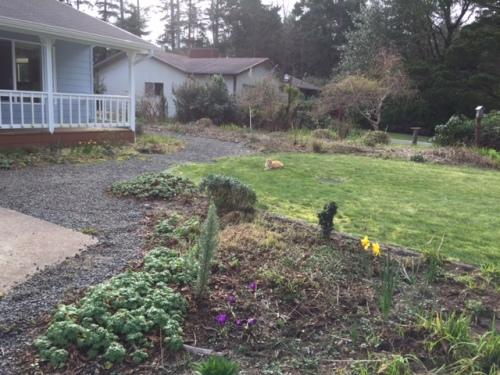 the garden, after