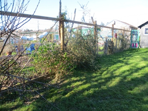 before, the east side of our fence