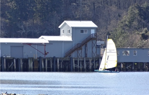 telephoto as Chris sails past the Ilwaco landing
