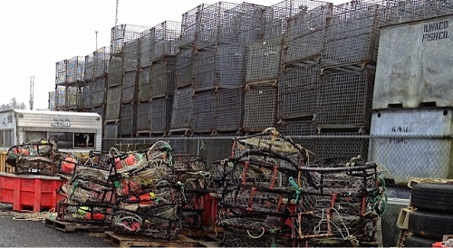 crab pots at the west end of the meander line