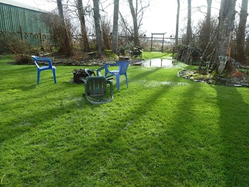 watery lawn around the firepit