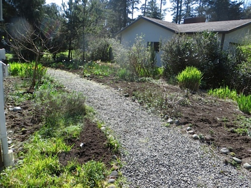 after:  Allan did almost all the mulching; I did weeding and seeding.